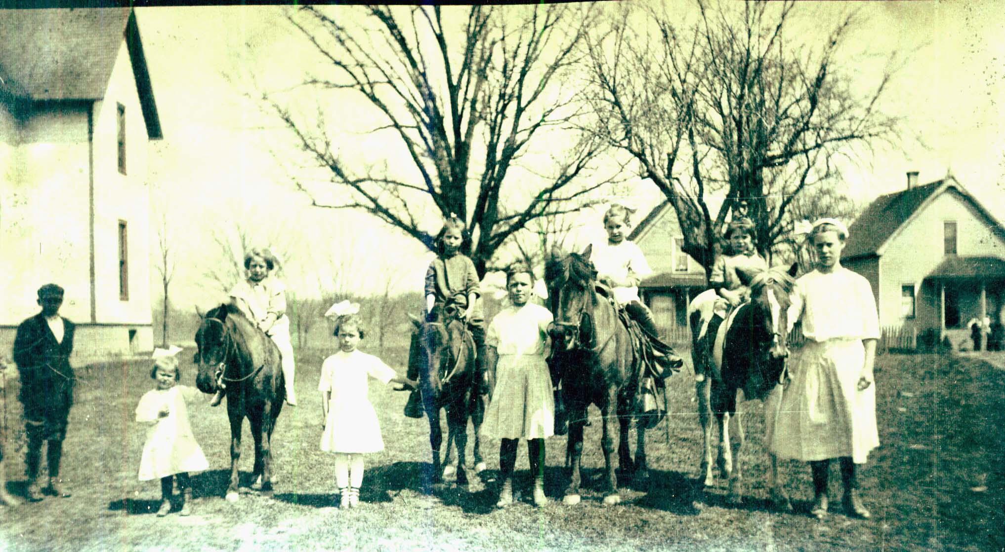 Daisy Dutcher Viv Horses